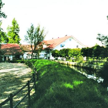 Gestüt Obere Mühle