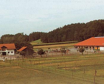Sommerholz Ranch